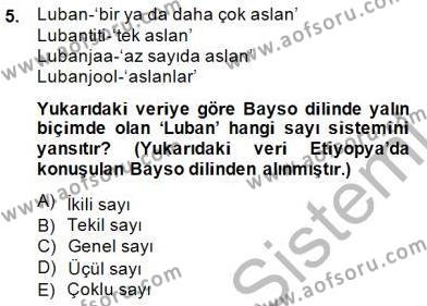 Türk Dili ve Edebiyatı Bölümü 5. Yarıyıl Genel Dilbilim I Dersi 2015 Yılı Güz Dönemi Dönem Sonu Sınavı 5. Soru