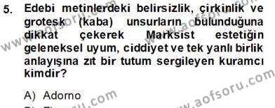 Türk Dili ve Edebiyatı Bölümü 8. Yarıyıl Eleştiri Kuramları Dersi 2013 Yılı Bahar Dönemi Dönem Sonu Sınavı 5. Soru