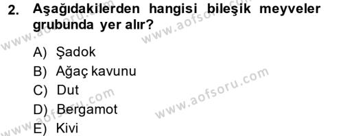 Tarım Bölümü 2. Yarıyıl Bahçe Tarımı I Dersi 2014 Yılı Bahar Dönemi Ara Sınavı 2. Soru