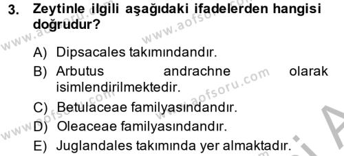 Tarım Bölümü 2. Yarıyıl Bahçe Tarımı I Dersi 2014 Yılı Bahar Dönemi Ara Sınavı 3. Soru