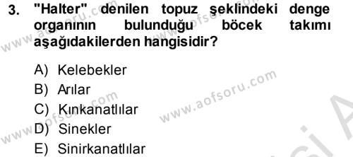 Tarım Bölümü 3. Yarıyıl Entomoloji Dersi 2014 Yılı Güz Dönemi Tek Ders Sınavı 3. Soru
