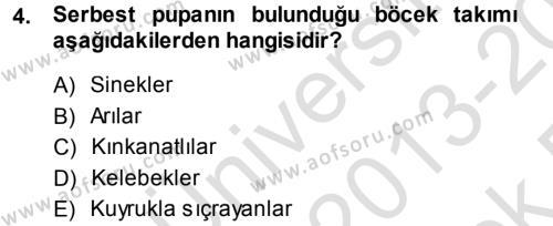 Tarım Bölümü 3. Yarıyıl Entomoloji Dersi 2014 Yılı Güz Dönemi Tek Ders Sınavı 4. Soru