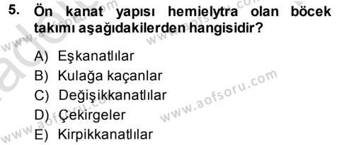 Tarım Bölümü 3. Yarıyıl Entomoloji Dersi 2014 Yılı Güz Dönemi Tek Ders Sınavı 5. Soru