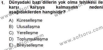 Sosyal Hizmetler Bölümü 3. Yarıyıl Türk Dili I Dersi 2014 Yılı Güz Dönemi Tek Ders Sınavı 1. Soru