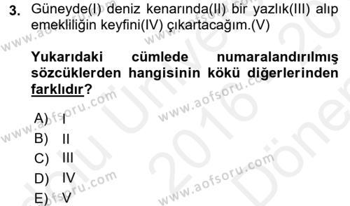 Türk Dili 1 Dersi 2016 - 2017 Yılı Dönem Sonu Sınavı 3. Soru