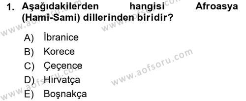 Türk Dili 1 Dersi 2017 - 2018 Yılı (Vize) Ara Sınav Soruları 1. Soru