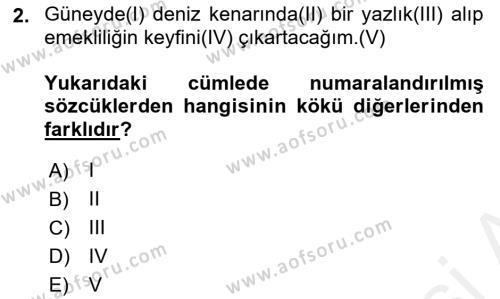 Türk Dili 1 Dersi 2018 - 2019 Yılı (Final) Dönem Sonu Sınav Soruları 2. Soru
