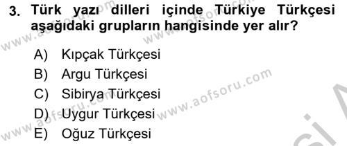 Türk Dili 1 Dersi 2018 - 2019 Yılı Yaz Okulu Sınavı 3. Soru