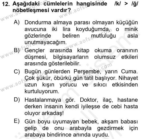Türk Dili 2 Dersi Ara Sınavı Deneme Sınav Soruları 12. Soru