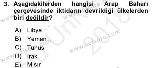 Türk Dış Politikası 2 Dersi 2017 - 2018 Yılı 3 Ders Sınav Soruları 3. Soru