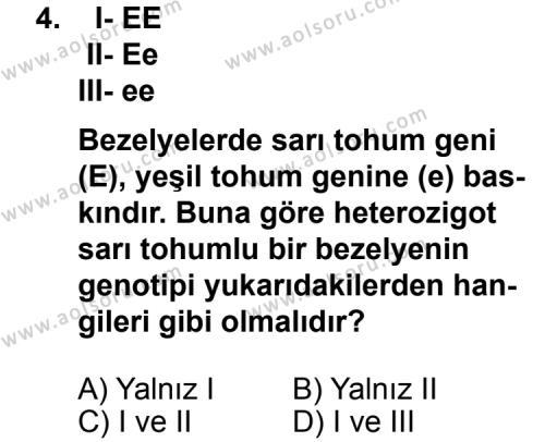 Seçmeli Biyoloji 4 Dersi 2011 - 2012 Yılı Ek Sınav Soruları 4. Soru