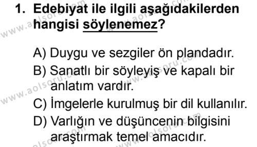 Seçmeli Türk Dili ve Edebiyatı 3 Dersi 2019 - 2020 Yılı 1. Dönem Sınav Soruları 1. Soru