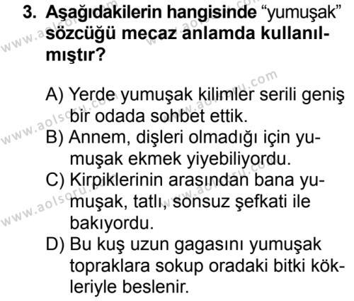 Türk Dili ve Edebiyatı 7 Dersi 2018 - 2019 Yılı 3. Dönem Sınavı 3. Soru